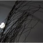 Eclipse_Daniel Louis_astronomie à troyes